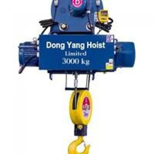 Palang cáp Hàn Quốc tải 2 tấn DONGYANG dầm treo