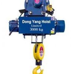 Palang cáp Hàn Quốc tải 1 tấn DONGYANG dầm treo