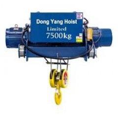 Palang cáp Hàn Quốc DONGYANG 2 dầm tải 7.5 tấn