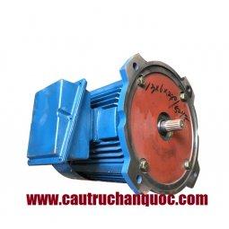 Động cơ nâng hạ palang hàn quốc công suất 13kwx6P